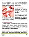 0000087733 Word Templates - Page 4