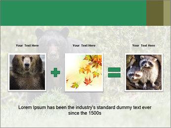 Black bear PowerPoint Templates - Slide 22