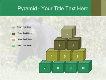 Black bear PowerPoint Templates - Slide 31