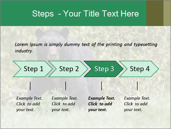 Black bear PowerPoint Templates - Slide 4