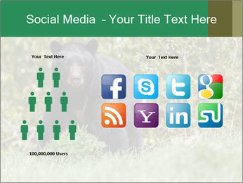 Black bear PowerPoint Templates - Slide 5