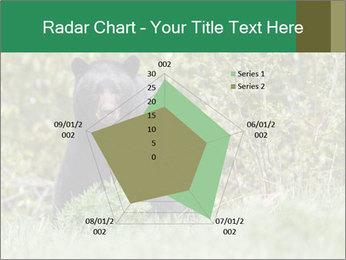 Black bear PowerPoint Templates - Slide 51