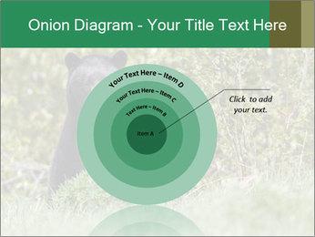 Black bear PowerPoint Templates - Slide 61