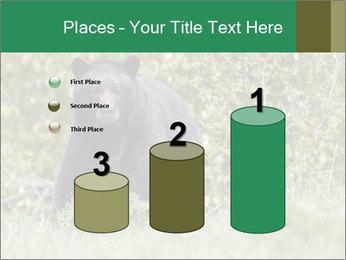 Black bear PowerPoint Templates - Slide 65