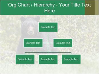 Black bear PowerPoint Templates - Slide 66