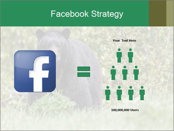 Black bear PowerPoint Templates - Slide 7