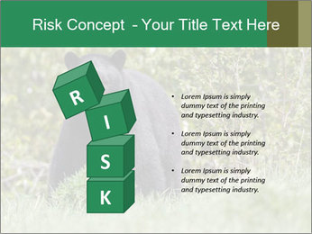 Black bear PowerPoint Templates - Slide 81