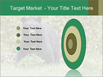 Black bear PowerPoint Templates - Slide 84