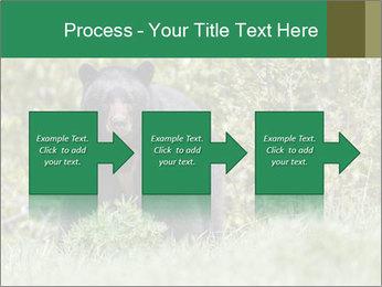 Black bear PowerPoint Templates - Slide 88