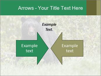 Black bear PowerPoint Templates - Slide 90