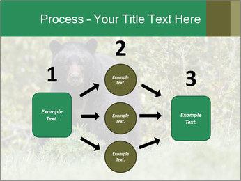 Black bear PowerPoint Templates - Slide 92
