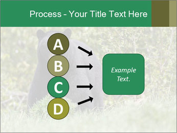 Black bear PowerPoint Templates - Slide 94