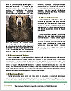 0000087736 Word Template - Page 4