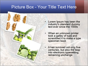 Seeds PowerPoint Template - Slide 17