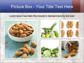 Seeds PowerPoint Template - Slide 19