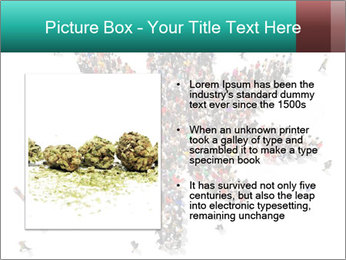 Medical marijuana PowerPoint Template - Slide 13