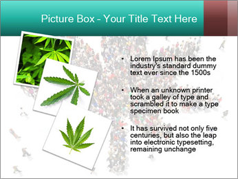 Medical marijuana PowerPoint Template - Slide 17
