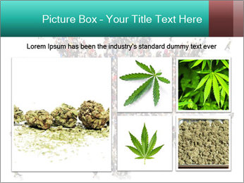 Medical marijuana PowerPoint Template - Slide 19