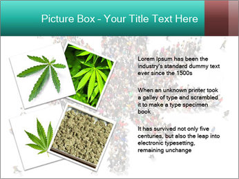 Medical marijuana PowerPoint Template - Slide 23