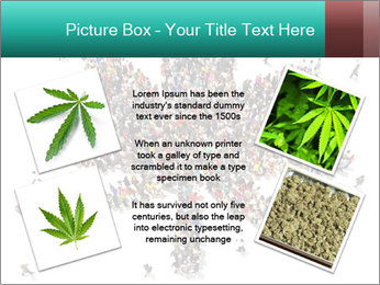 Medical marijuana PowerPoint Template - Slide 24