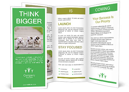 0000087757 Brochure Template