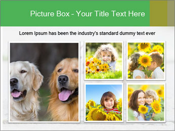 English bulldog PowerPoint Template - Slide 19