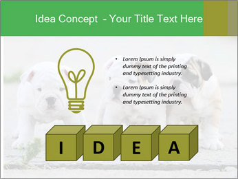 English bulldog PowerPoint Template - Slide 80