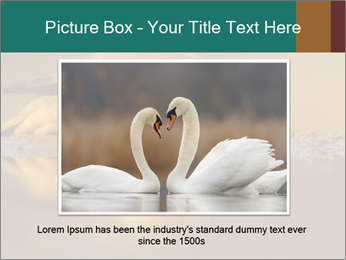 Red-billed PowerPoint Templates - Slide 16