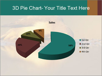 Red-billed PowerPoint Templates - Slide 35