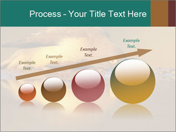 Red-billed PowerPoint Templates - Slide 87