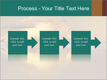 Red-billed PowerPoint Templates - Slide 88