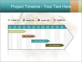 0000087760 PowerPoint Template - Slide 25