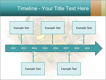0000087760 PowerPoint Template - Slide 28