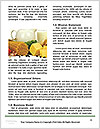 0000087770 Word Templates - Page 4