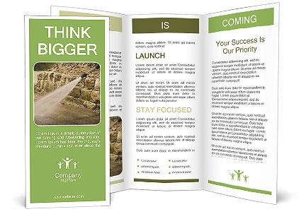 0000087773 Brochure Template