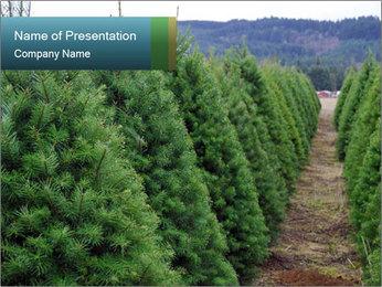 Christmas Tree Farm PowerPoint Template - Slide 1