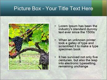 Christmas Tree Farm PowerPoint Template - Slide 13