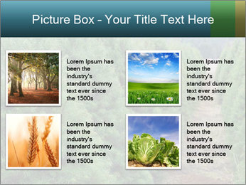Christmas Tree Farm PowerPoint Template - Slide 14