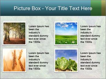 Christmas Tree Farm PowerPoint Template - Slide 14
