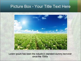 Christmas Tree Farm PowerPoint Template - Slide 16