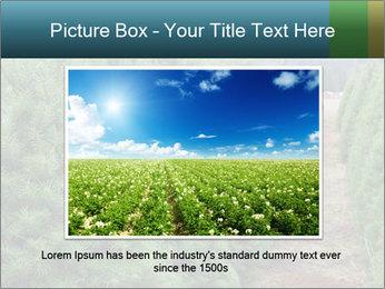 Christmas Tree Farm PowerPoint Template - Slide 16
