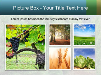 Christmas Tree Farm PowerPoint Template - Slide 19