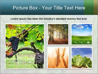 Christmas Tree Farm PowerPoint Template - Slide 19