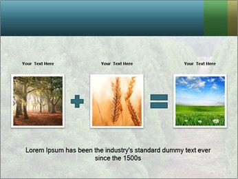 Christmas Tree Farm PowerPoint Template - Slide 22