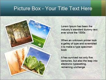 Christmas Tree Farm PowerPoint Template - Slide 23