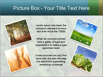 Christmas Tree Farm PowerPoint Template - Slide 24