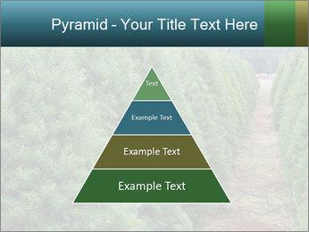 Christmas Tree Farm PowerPoint Template - Slide 30