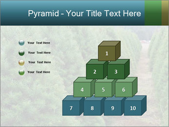 Christmas Tree Farm PowerPoint Template - Slide 31