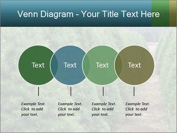 Christmas Tree Farm PowerPoint Template - Slide 32