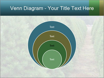 Christmas Tree Farm PowerPoint Template - Slide 34